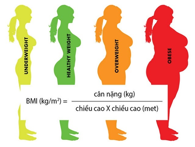 A BMI test is a great way to check for excess or underweight